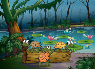 A forest with turtles and fishes at the pond