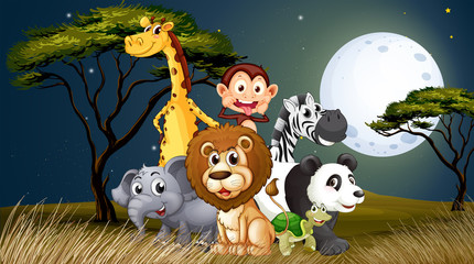 A group of playful animals under the bright fullmoon