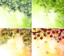 Four border designs