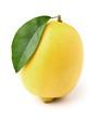 One ripe lemon