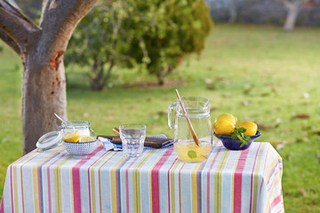 Preparing homemade lemonade in garden