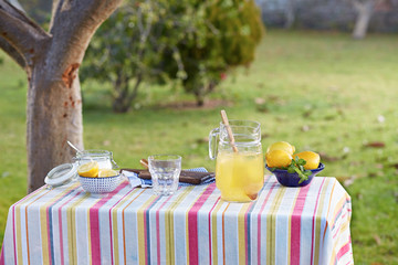 Preparing homemade lemonade in garden table