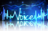 voice verification poster