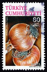 Postage stamp Turkey 2005 Common Onion, Vegetable