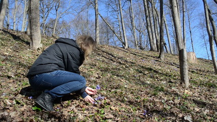 woman with black jacket in the early morning picks violets bloom