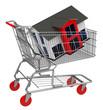 Das Haus im Einkaufswagen