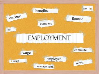Employment Corkboard Word Concept