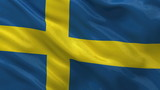 Flag of Sweden - seamless loop