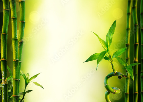 background with bamboo for spa treatment - olive green