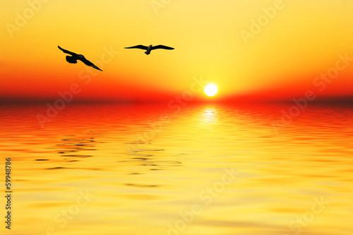 In de dag Oranje eclat amanecer en el mar