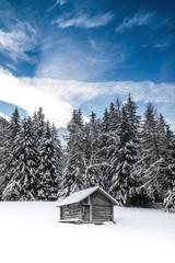 panorama alpino innevato