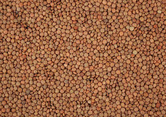 Green lentils background