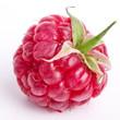 Raspberry on white background