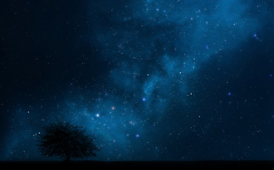 Night sky with a tree and milky way