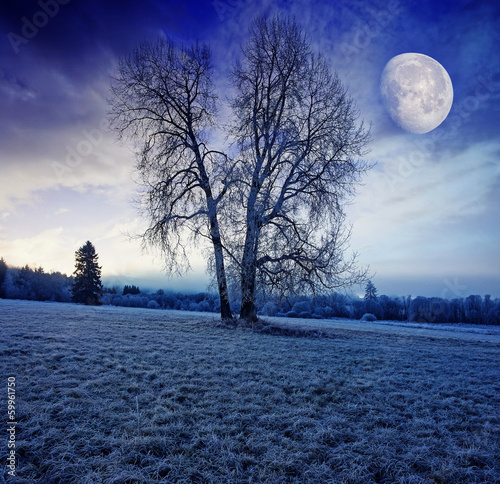 winter morning with moon