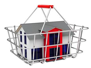 Das Haus im Einkaufskorb