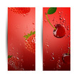 Vector Illustration of Fruit Banners