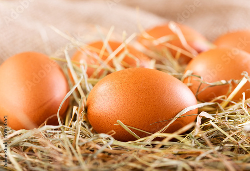 brown eggs - 59973554