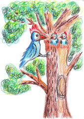 illustration bird family