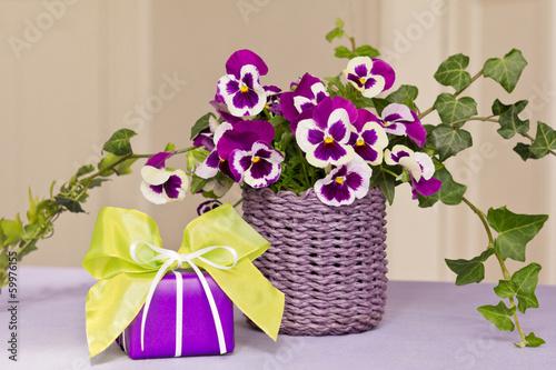 Fotobehang Pansies Kleines Geschenk mit Frühlingsdeko