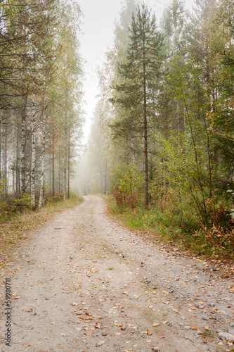 Panel Szklany Autumn road