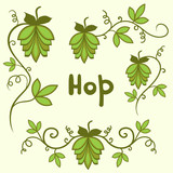 Stylized hops set