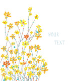 Daffodils floral graphic background for card