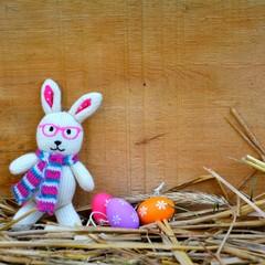 kleiner Osterhase mit Eiern im Stroh