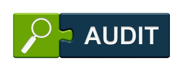 Puzzle Button grün blau: Audit