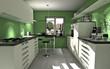 Moderne Küche mit grüner Wand