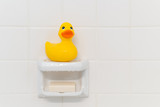 Rubber Duck in Shower