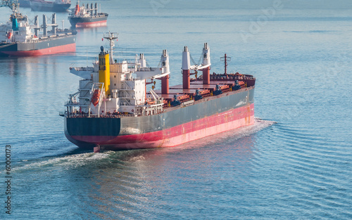Bulk Carrier - 60000173