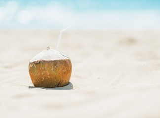 Closeup on coconut laying on beach