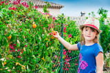 Portrait of a cute little girl with passion fruite