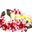 Easter vector background with eggs and flowers