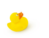 Yellow Rubber Duck
