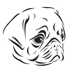 Line art of pug's head