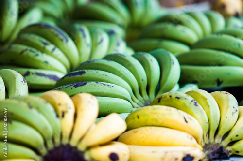 green and yellow bananas fruits in the market