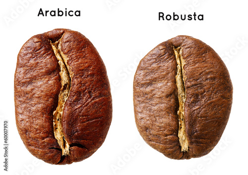 Leinwandbild Motiv Black arabica, robusta coffee bean isolated on white background.