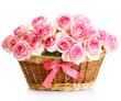 beautiful bouquet of pink roses in basket, isolated on white