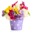 Beautiful bouquet of freesias in pail, isolated on white