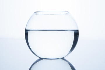 Empty fish bowl with water