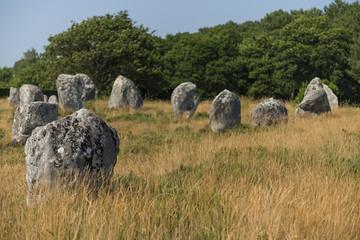Alignements du Menec (Menhirs, mégalithes, pierres levées), à