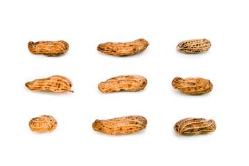 .peanuts