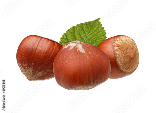 Hazelnuts with leaf isolated on white