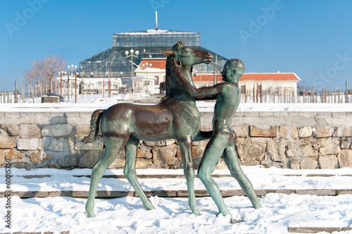 Zielona Góra Pomnik chłopca z koniem zima - 60015750