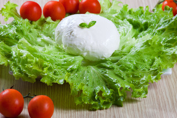 Mozzarella, salad and tomatoes