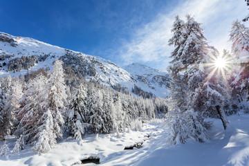 winter post card