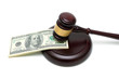 money and gavel on white background close up