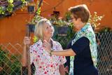 Two elderly ladies chatting in the garden. - 60036377